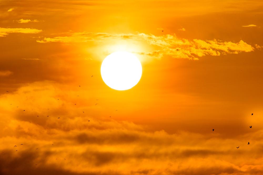 Denný slnko Zoznamka