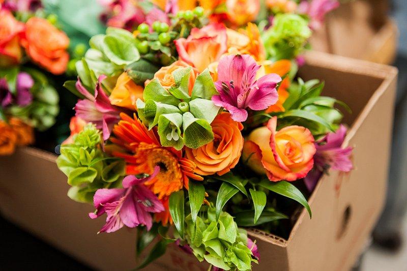 cd1612865 Farba kvetov má svoj význam   Spoznajme sa